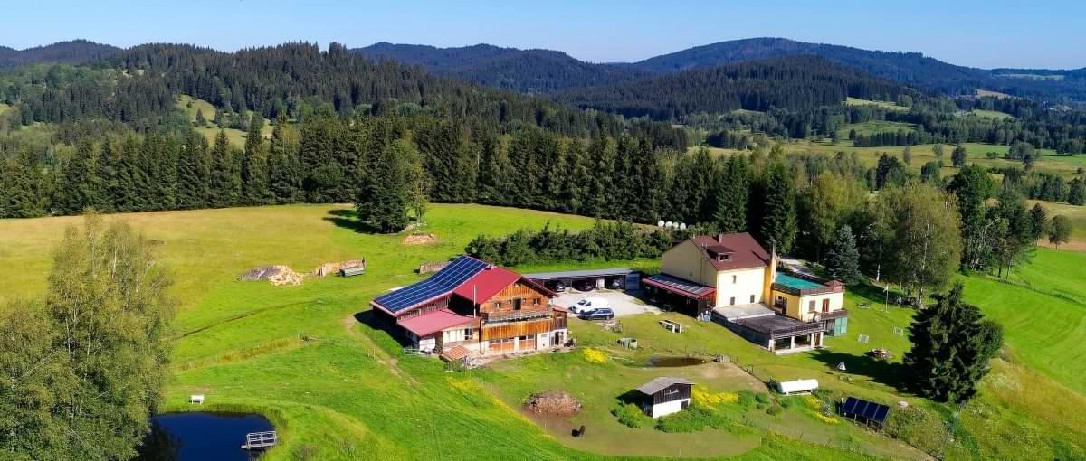 runenhof-bauernhof-pension-bayerischer-wald-dreilaendereck-alleinlage