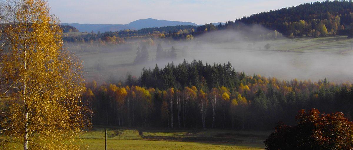 Freizeitangebote Bayerischer Wald Nationalpark Wandern Natur