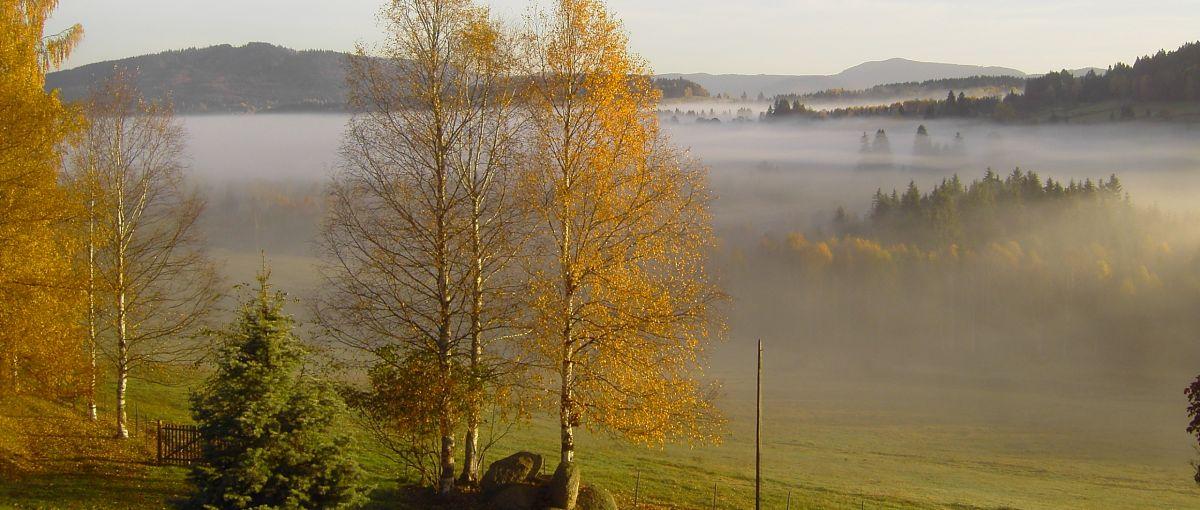 Herbsturlaub in Bayern Herbst am Runenhof