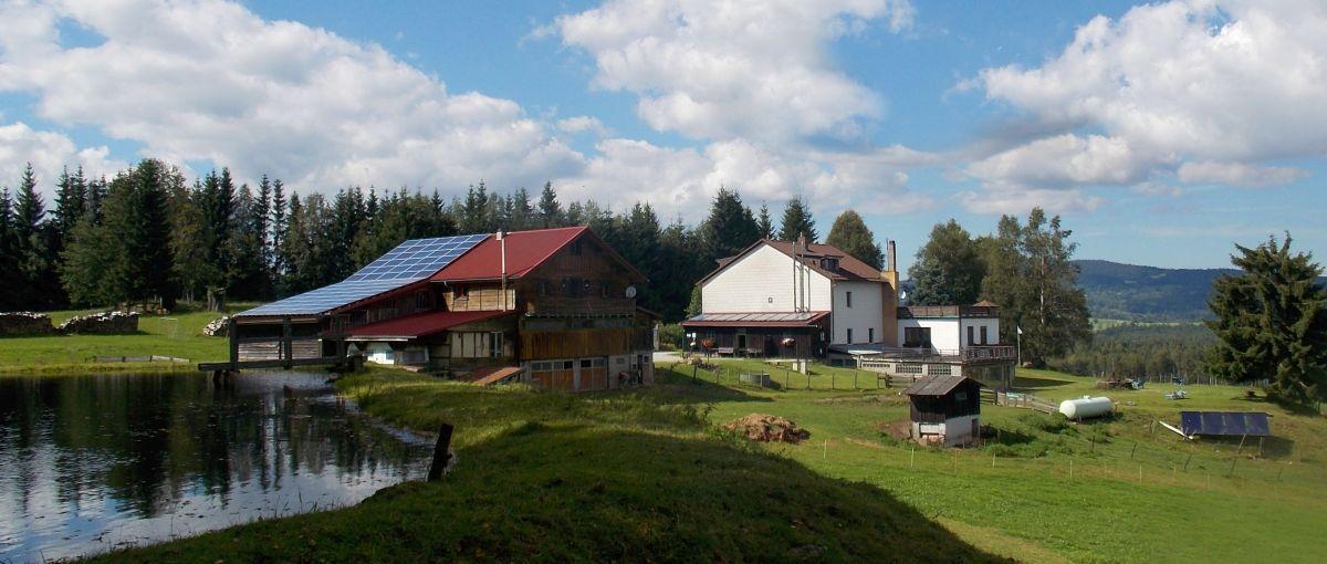 Pension Bayerischer Wald Bauernhofurlaub am Runenhof