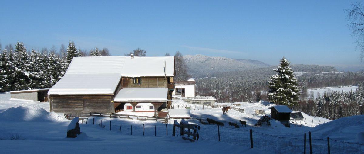 Winterurlaub Bayerischer Wald Bauernhof Pension im Winter